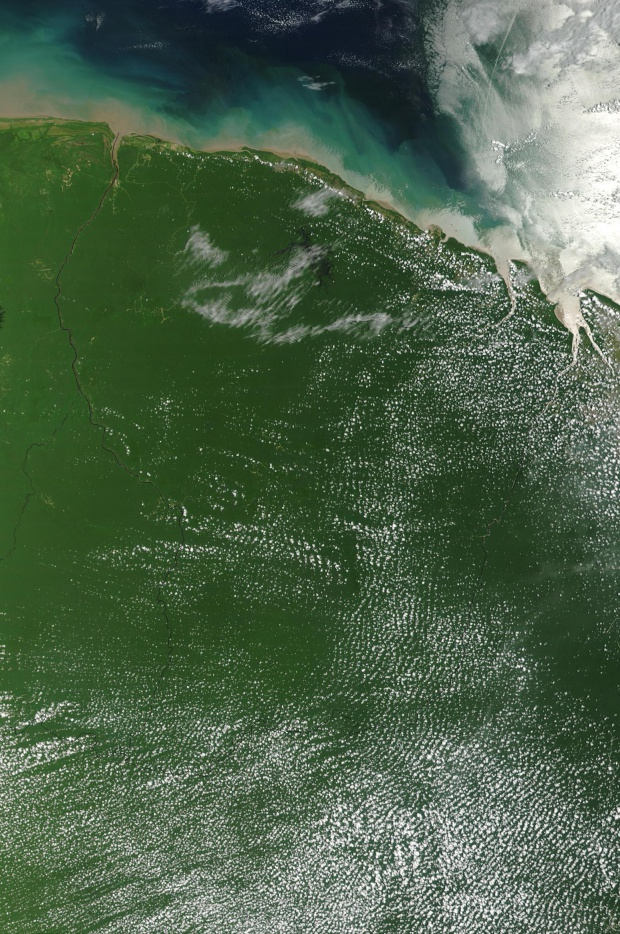 Imagen, Foto Satelite de la Guyana Francesa (Francia)