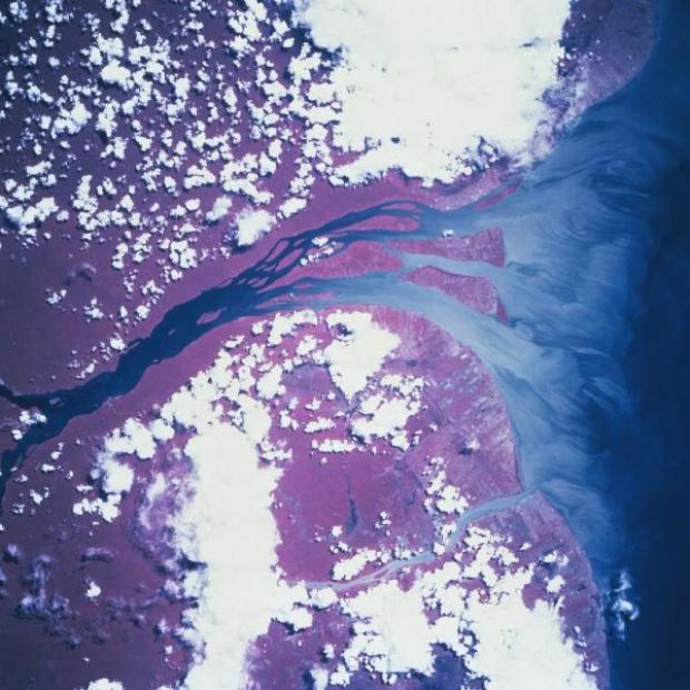 Imagen, Foto Satelite del Rio Essequibo, Guyana