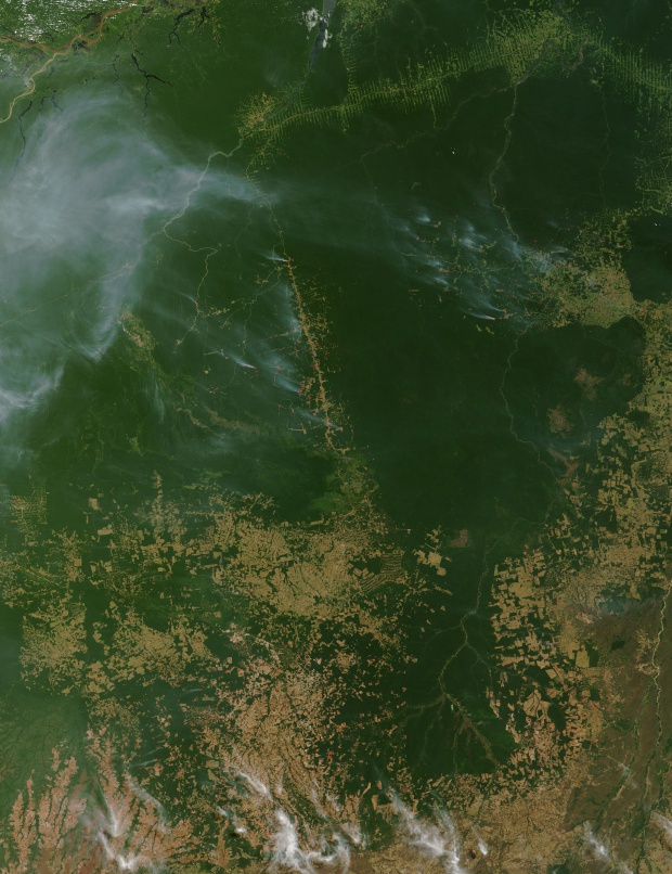 Incendios a través del Mato Grosso, Brasil (seguimiento satelital de la mañana)