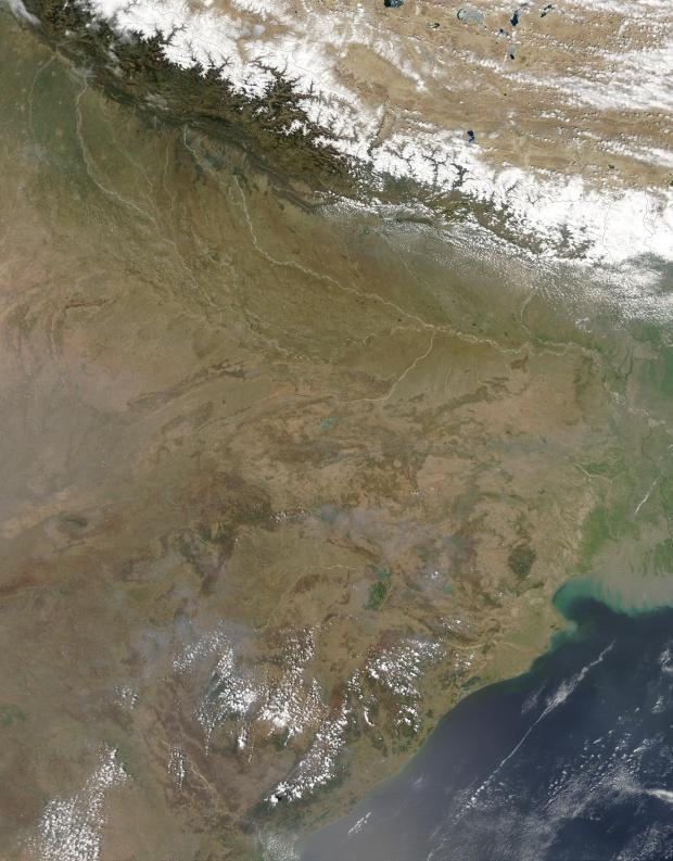 Incendios en India oriental