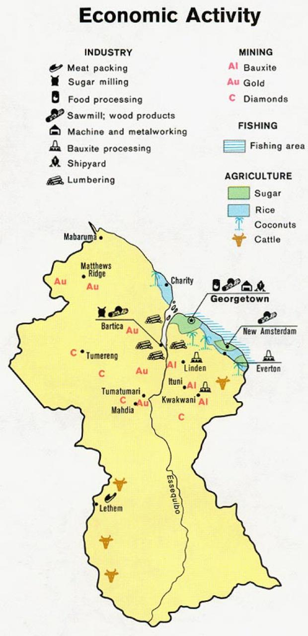 Mapa de Actividad Económica de la Guyana