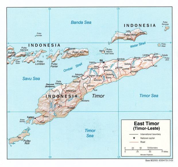 Mapa de Relieve Sombreado de Timor Oriental