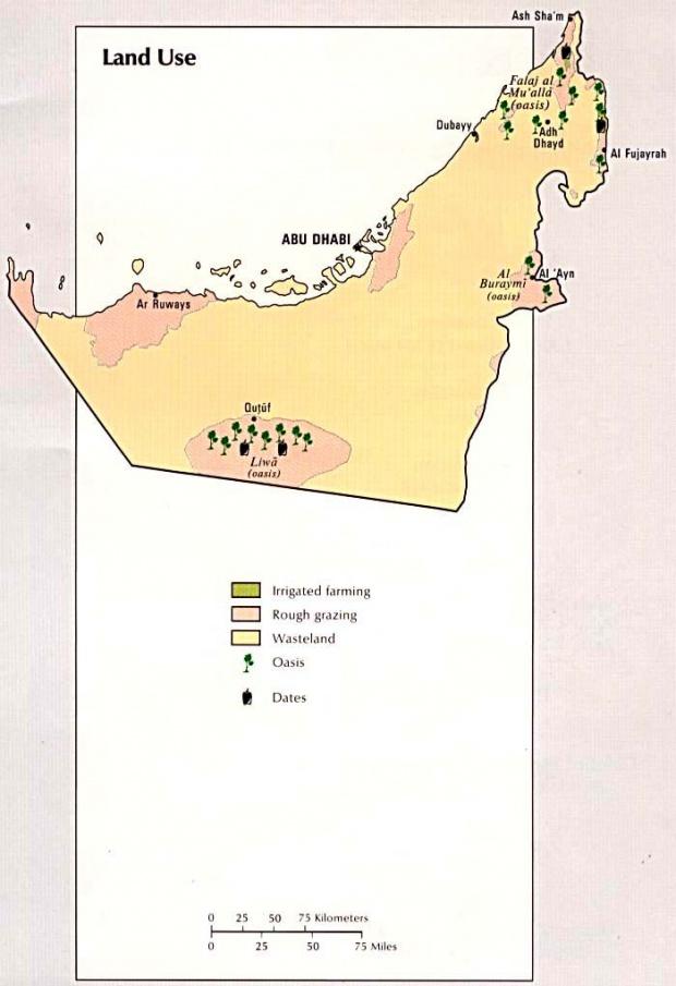 Mapa del Uso de la Tierra de los Emiratos Árabes Unidos