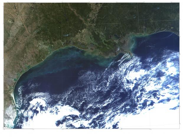 Marea roja cerca de la costa de Texas