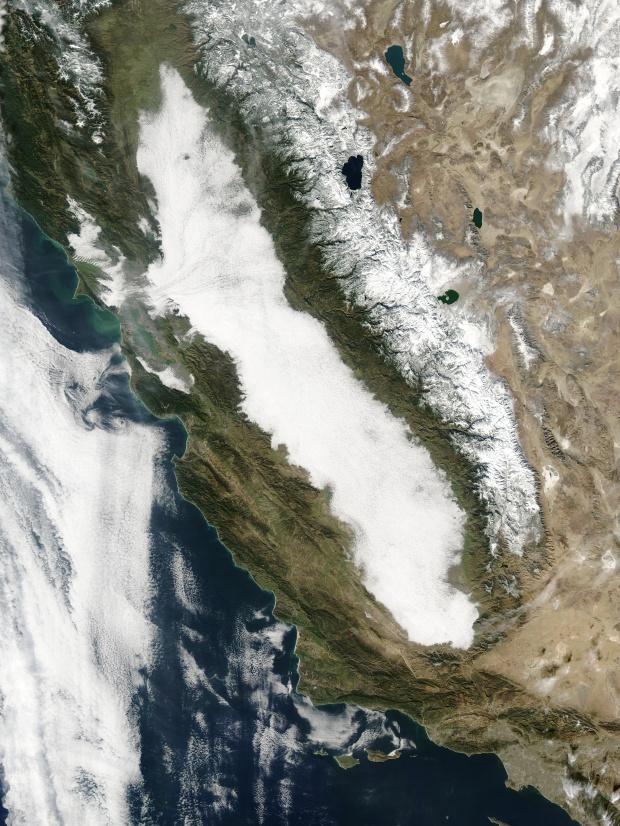 Niebla en California