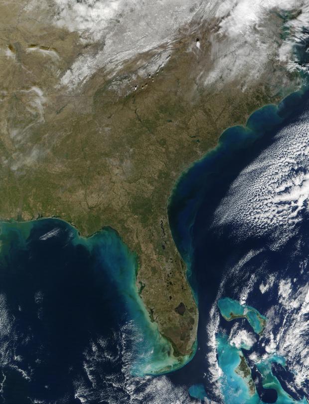 Proliferación de fitoplancton a lo largo de la costa de sureste Estados Unidos