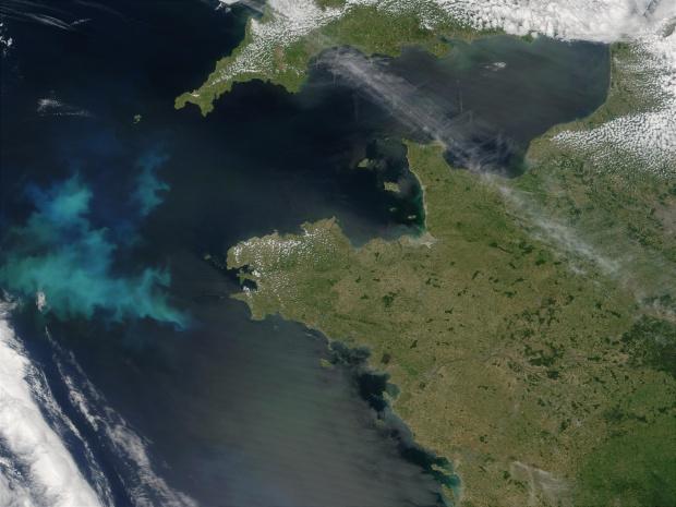 Proliferación de fitoplancton cerca de la costa de Bretaña, Francia