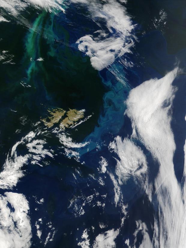 Proliferación de fitoplancton cerca de las Islas Malvinas, Océano Atlántico sur