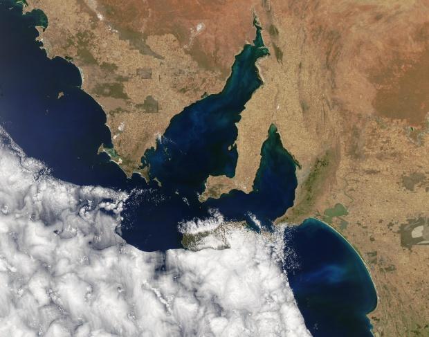 Proliferación de fitoplancton cerca sur de Australia